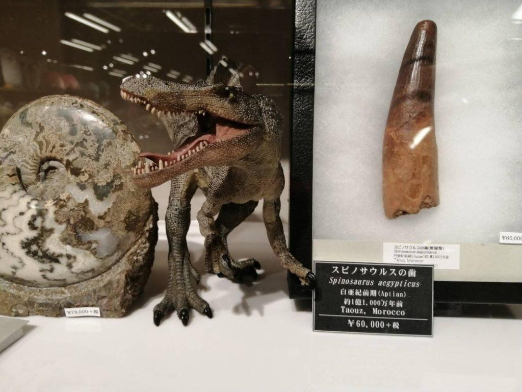物販:恐竜